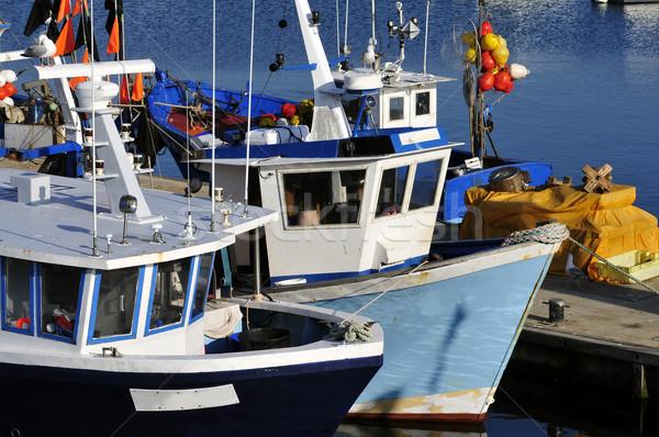 Vissen boten haven afdeling zee Stockfoto © Musat