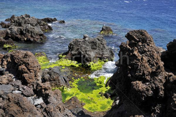 Sahil san juan tenerife yeşil İspanyolca Stok fotoğraf © Musat