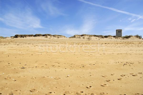 Duin la Frankrijk strand regio afdeling Stockfoto © Musat