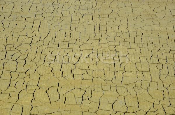 Gebarsten grond zout schaal la regio Stockfoto © Musat