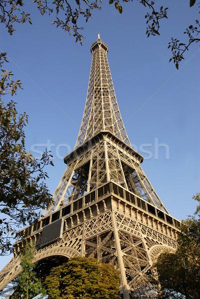 Eiffeltoren Parijs loof blauwe hemel boom Stockfoto © Musat