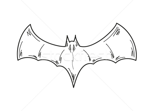 Sketch bat bianco vettore isolato cielo Foto d'archivio © muuraa