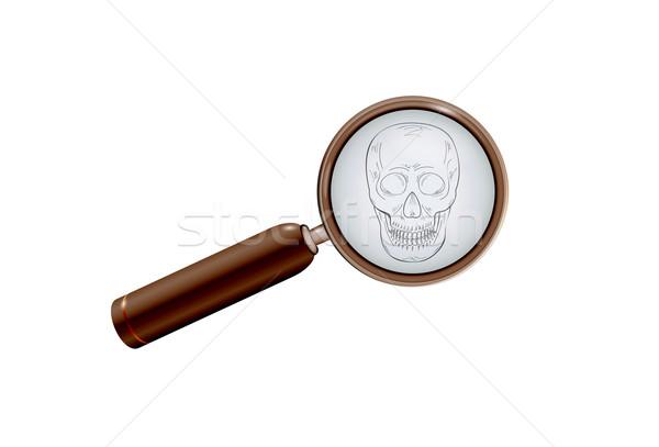 skull and magnifying glass Stock photo © muuraa