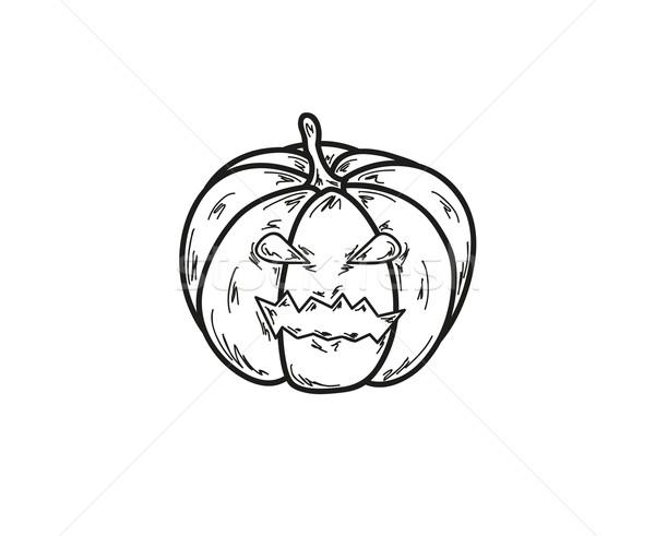 Abóbora ilustração branco vetor natureza preto Foto stock © muuraa
