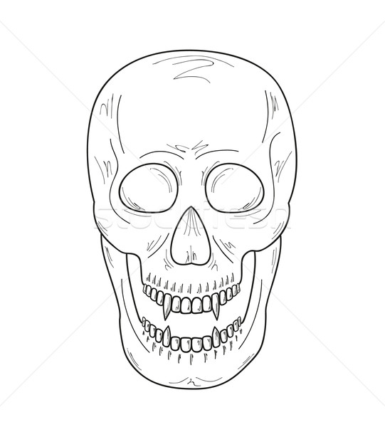 skull with vampire teeth, sketch Stock photo © muuraa