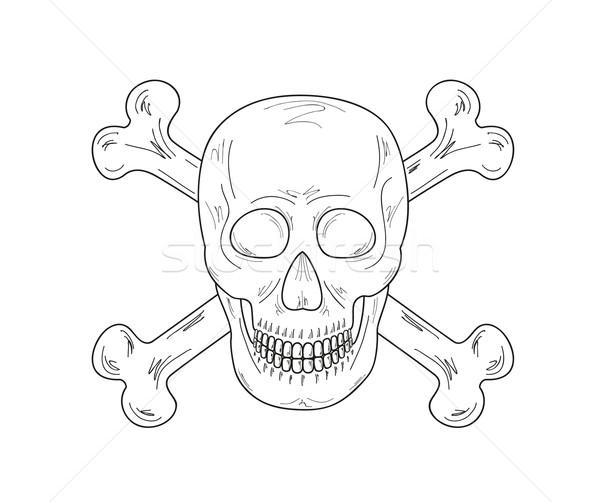 эскиз череп костях белый вектора улыбка Сток-фото © muuraa