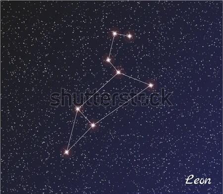 созвездие звездой темно небе вектора воды Сток-фото © muuraa