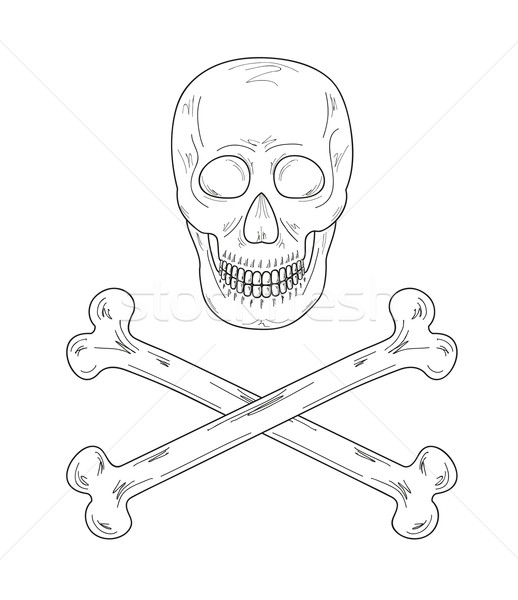 Stock photo: sketch of the skull and bones