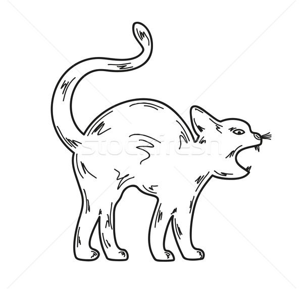 Zangado gato esboço branco vetor olhos Foto stock © muuraa