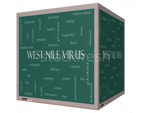 West Nile Virus Word Cloud Concept on a 3D Blackboard Stock photo © mybaitshop