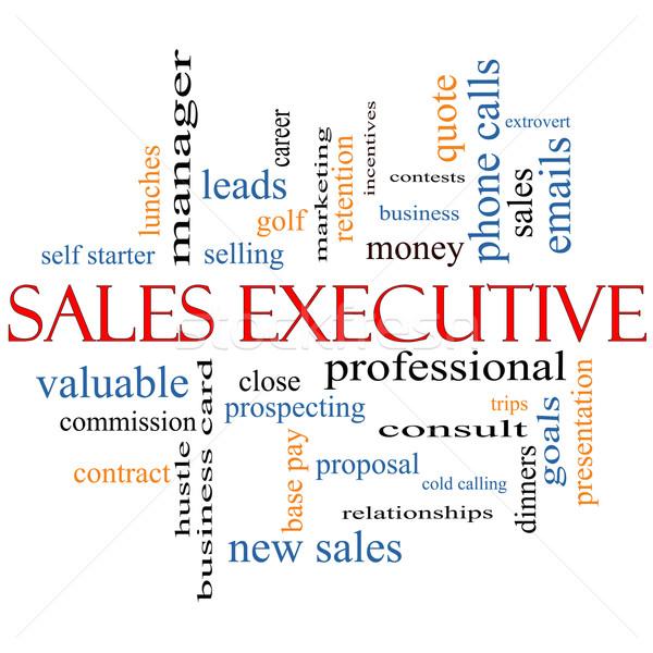 Sales Executive Word Cloud Concept Stock photo © mybaitshop