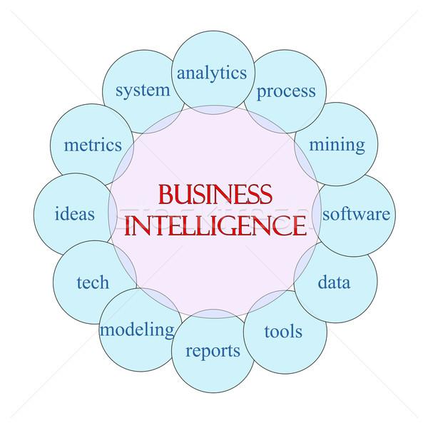 ビジネス インテリジェンス 言葉 図 ピンク ストックフォト © mybaitshop
