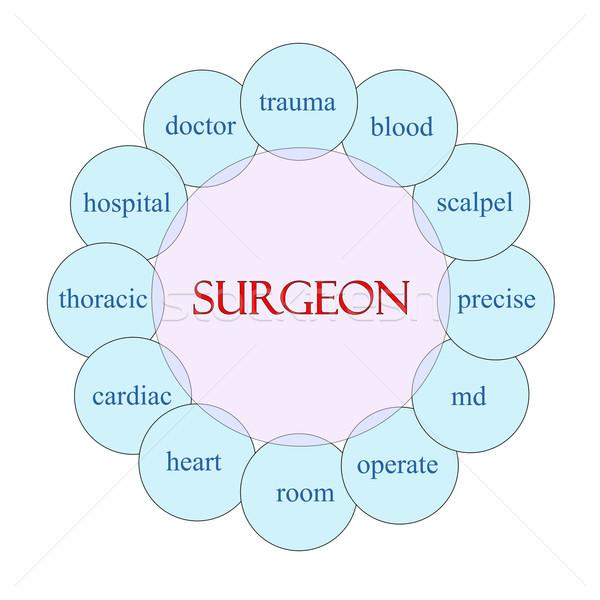 Cirurgião palavra diagrama rosa azul Foto stock © mybaitshop