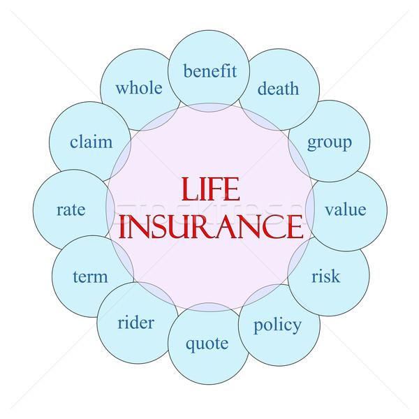életbiztosítás körkörös szó diagram rózsaszín kék Stock fotó © mybaitshop