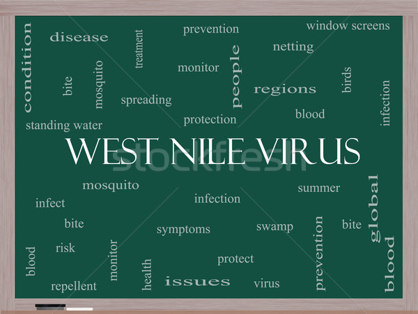 West Nile Virus Word Cloud Concept on a Blackboard Stock photo © mybaitshop