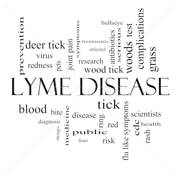 Lyme Disease Word Cloud Concept in black and white Stock photo © mybaitshop