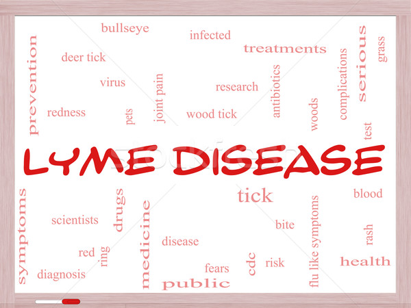 Lyme Disease Word Cloud Concept on a Whiteboard Stock photo © mybaitshop