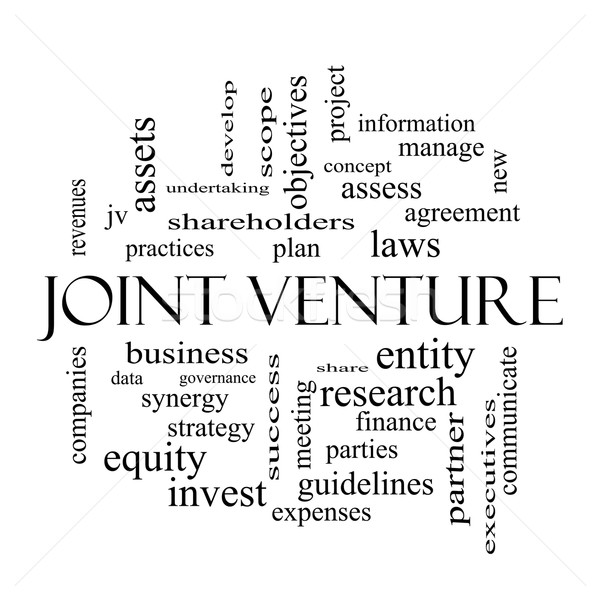 Joint Venture Word Cloud Concept in black and white Stock photo © mybaitshop