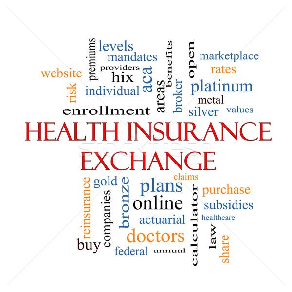 Egészségbiztosítás csere szófelhő nagyszerű ezüst tervek Stock fotó © mybaitshop