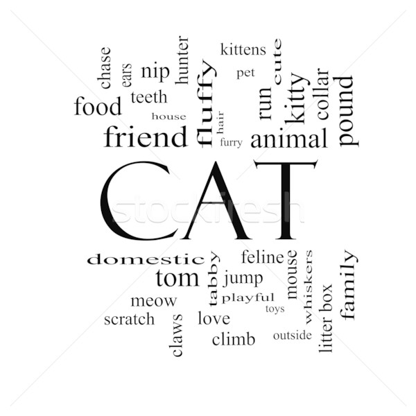 Cat Word Cloud Concept in black and white Stock photo © mybaitshop