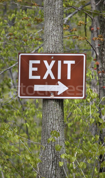 An exit sign on a tree. Stock photo © mybaitshop