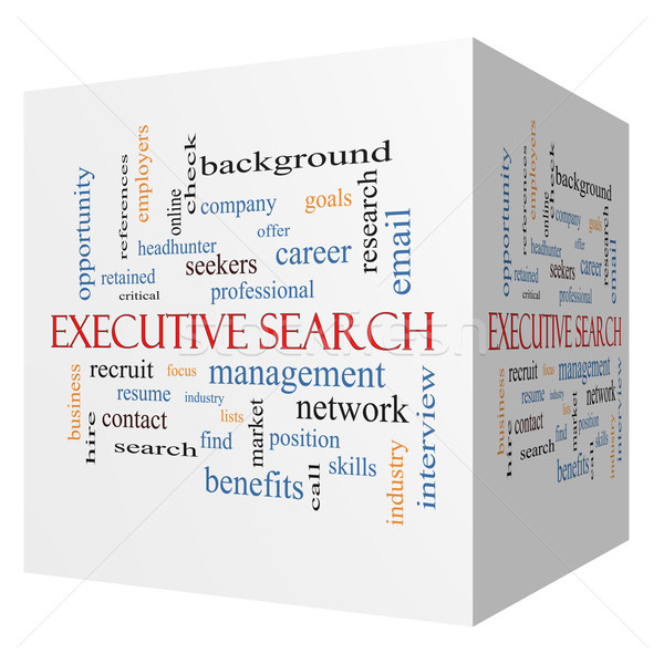 Executive Search 3D cube Word Cloud Concept Stock photo © mybaitshop