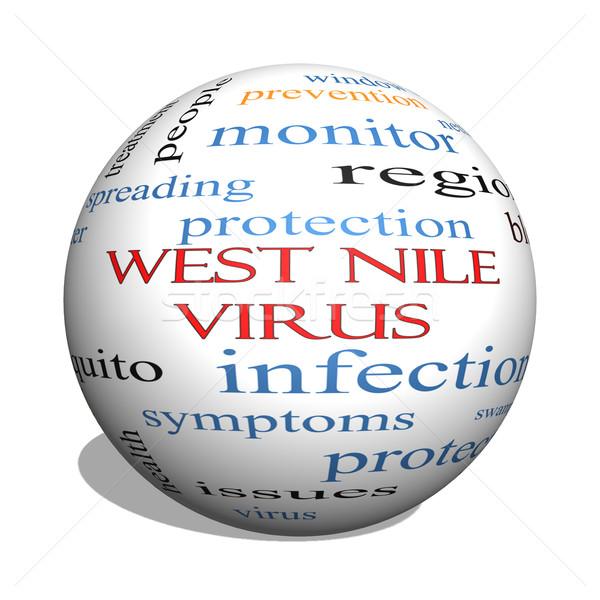 West Nile Virus 3D sphere Word Cloud Concept Stock photo © mybaitshop