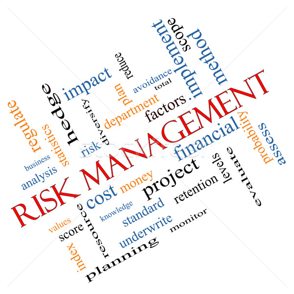 Risk Management Word Cloud Concept Angled Stock photo © mybaitshop