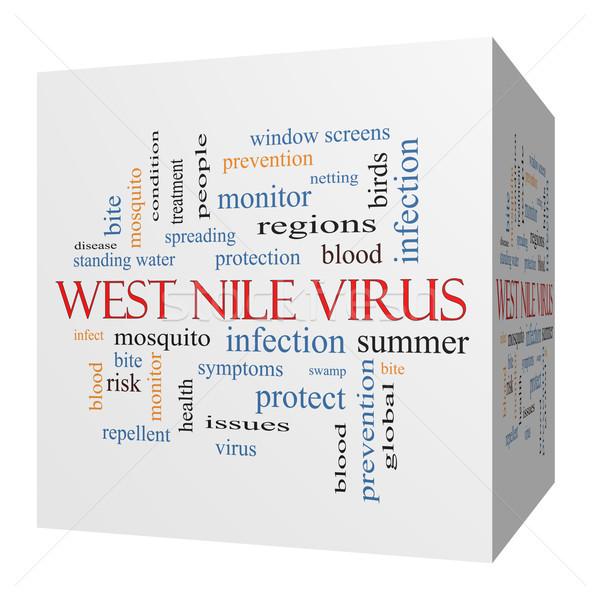 West Nile Virus 3D cube Word Cloud Concept Stock photo © mybaitshop
