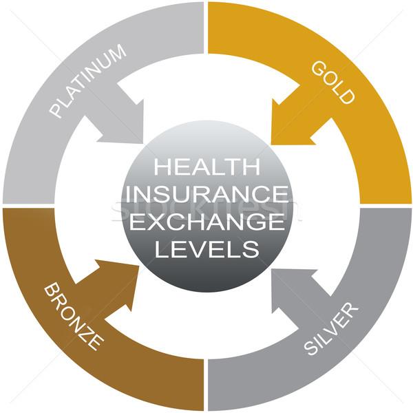 Egészségbiztosítás szó kör csere nagyszerű arany Stock fotó © mybaitshop