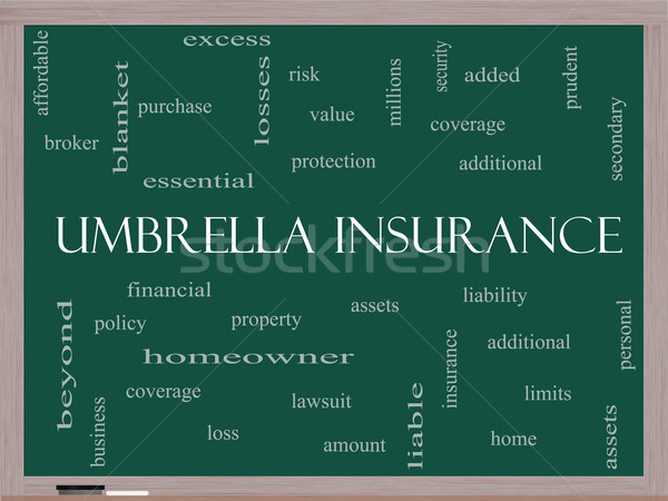 Umbrella Insurance Word Cloud Concept on a Blackboard Stock photo © mybaitshop