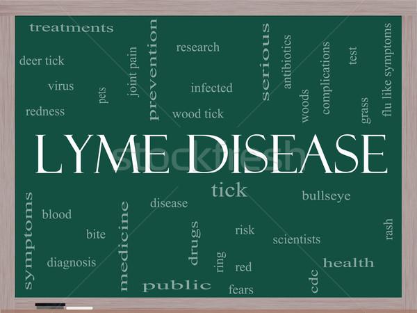 Lyme Disease Word Cloud Concept on a Blackboard Stock photo © mybaitshop
