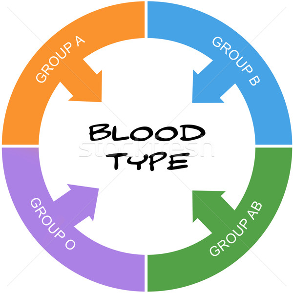 Blood Type Word Circle Concept Scribbled Stock photo © mybaitshop