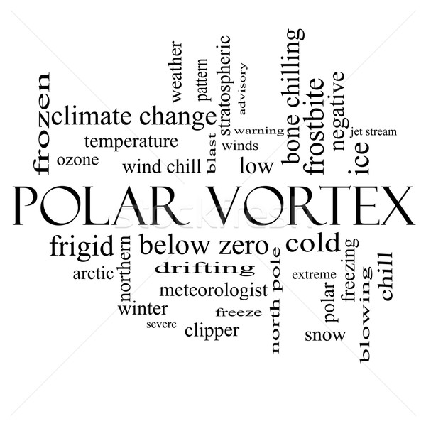 Polar Vortex Word Cloud Concept in black and white Stock photo © mybaitshop