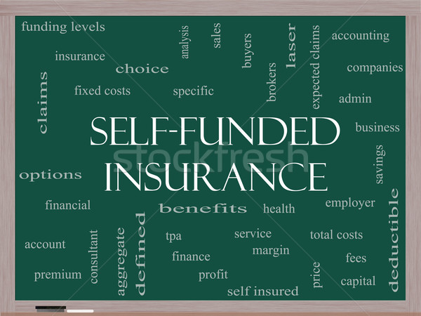 Self Funded Insurance Word Cloud on a Blackboard Stock photo © mybaitshop