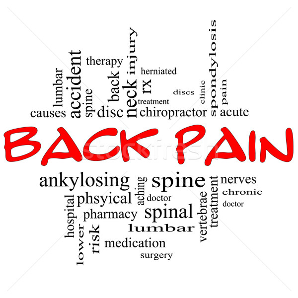 Back Pain Word Cloud Concept in black & red Stock photo © mybaitshop