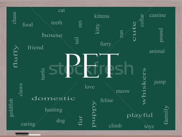 Animal de estimação nuvem da palavra lousa gato tartaruga Foto stock © mybaitshop