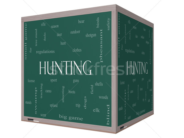 Hunting Word Cloud Concept on a 3D cube Blackboard Stock photo © mybaitshop