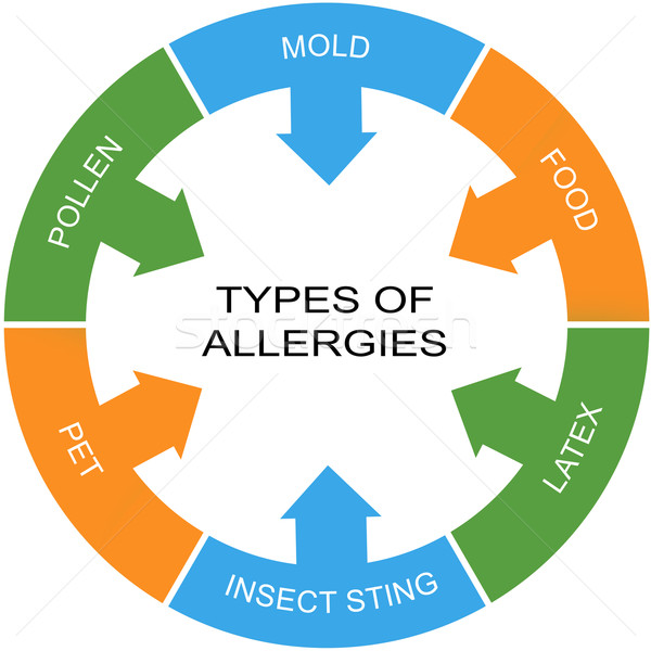 Types of Allergies Word Circle Concept Stock photo © mybaitshop