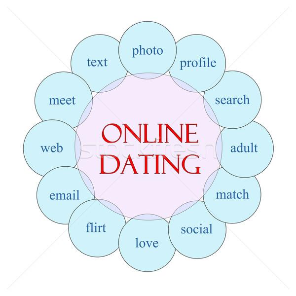 Línea data circular palabra diagrama rosa Foto stock © mybaitshop