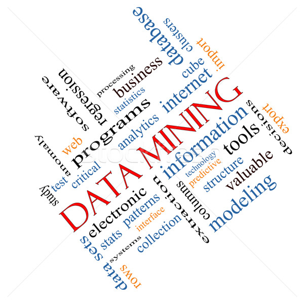 Data Mining Word Cloud Concept Angled Stock photo © mybaitshop