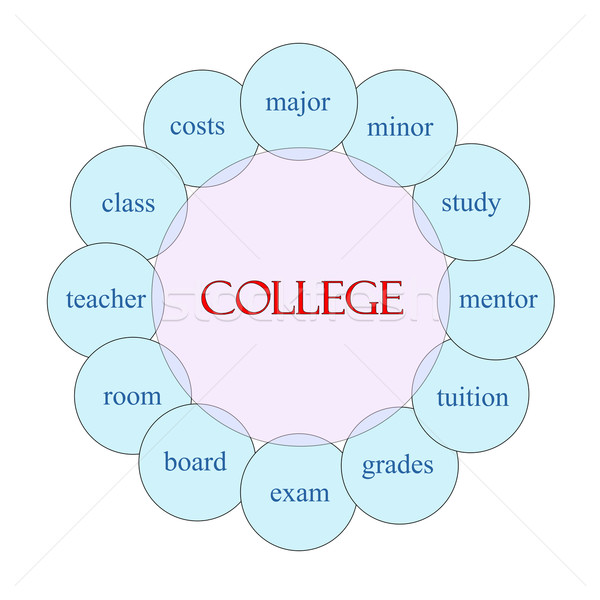 Főiskola körkörös szó diagram rózsaszín kék Stock fotó © mybaitshop