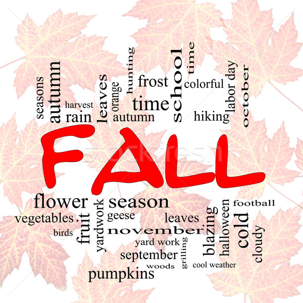 Fall or Autumn Word Cloud Concep on leaves Stock photo © mybaitshop