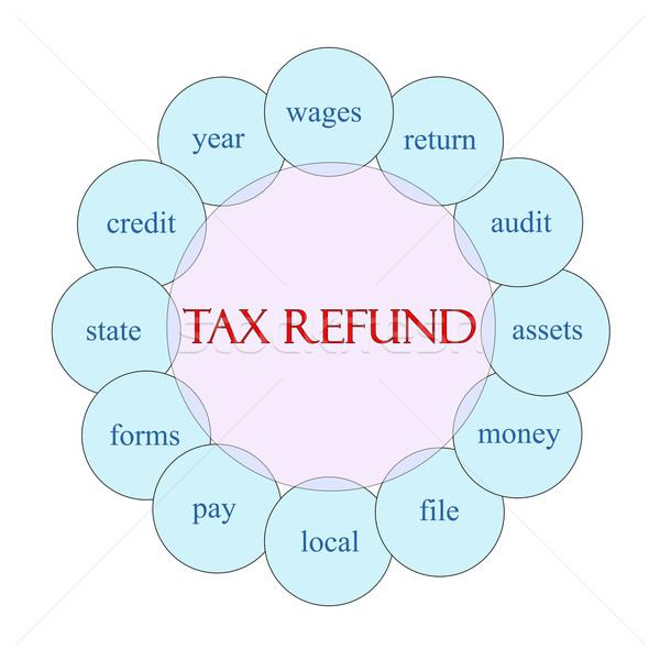 налоговых слово диаграмма розовый Сток-фото © mybaitshop