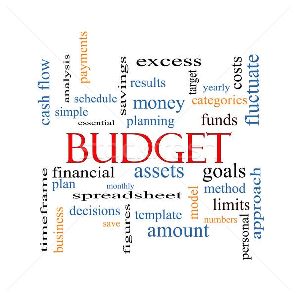 Budget Word Cloud Concept Stock photo © mybaitshop