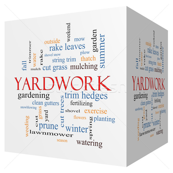 Yardwork 3D cube Word Cloud Concept Stock photo © mybaitshop