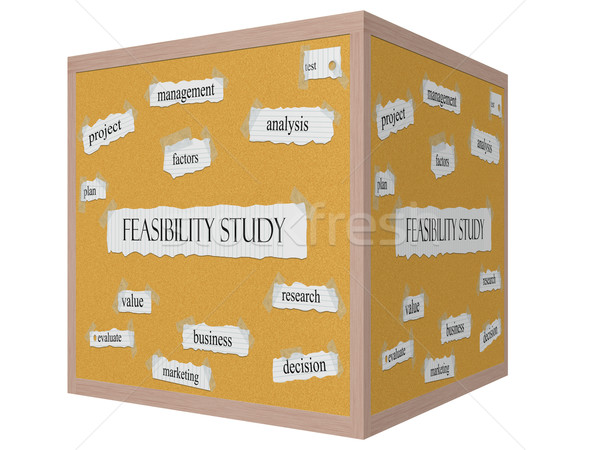 Feasibility Study 3D cube Corkboard Word Concept Stock photo © mybaitshop
