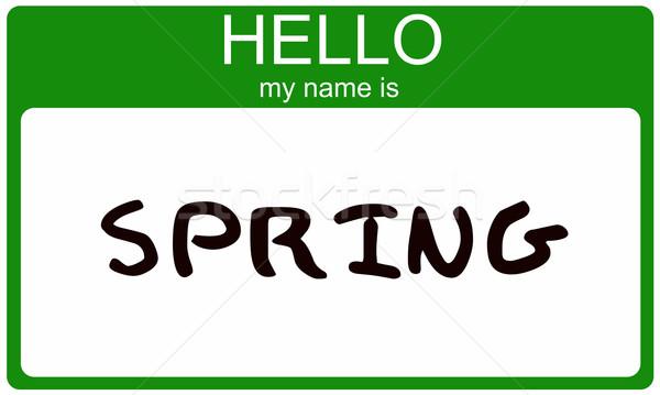 Tavasz névtábla hello enyém név matrica Stock fotó © mybaitshop