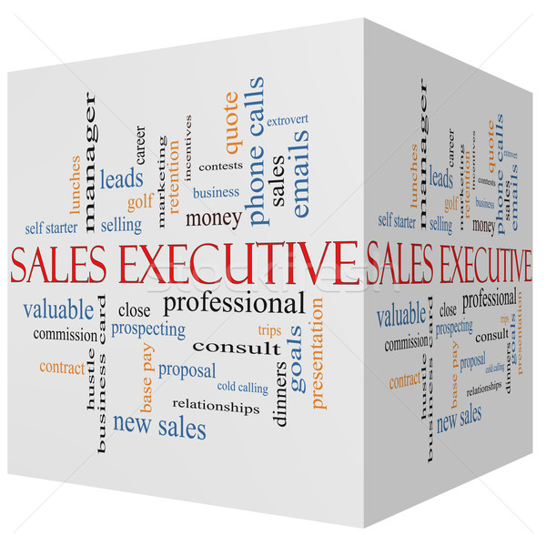 Sales Executive 3D cube Word Cloud Concept Stock photo © mybaitshop