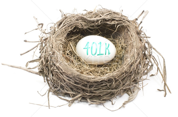 Bird's Nest with 401K Egg Stock photo © mybaitshop